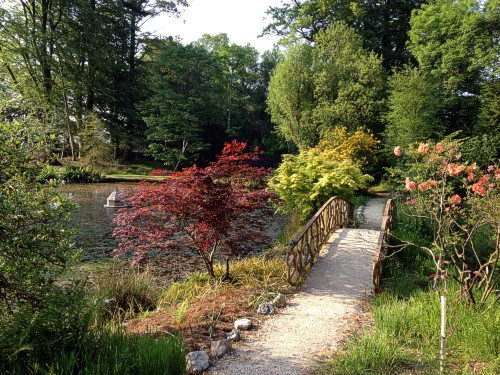 An introduction to Heathercombe Gardens