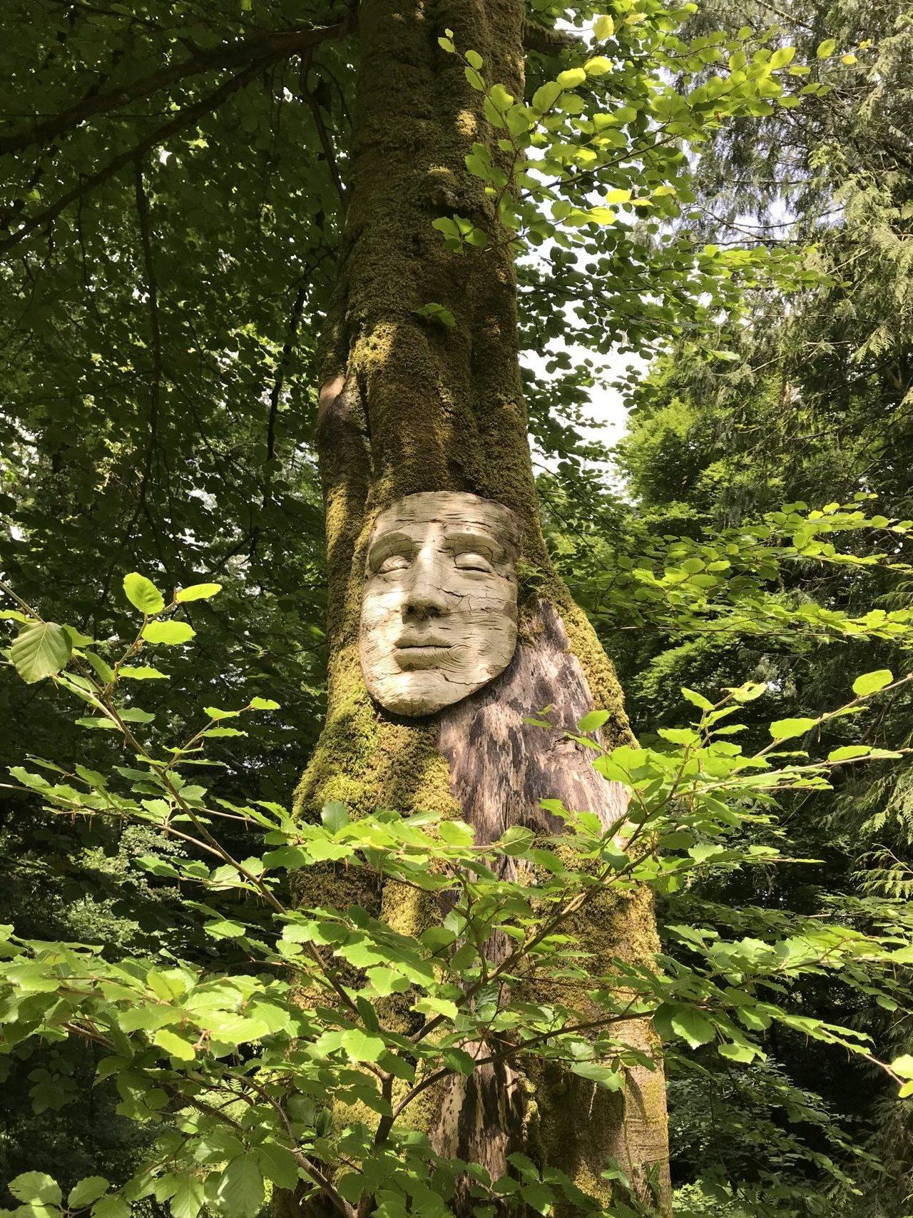 Birch Face Woodland Spirit Mask